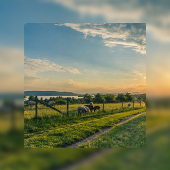 Rural Wireless Connectivity – A Big Problem With A Simple Solution – Keith Bloomer